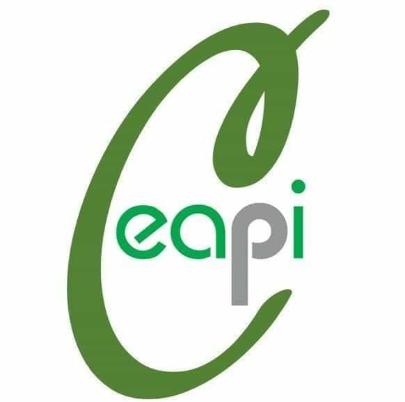 Colégio Ceapi