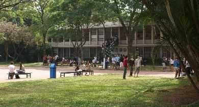 Colégio Santa Cruz - foto 6
