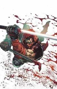 Red Hood Outlaw #43 CVR B Tan