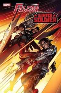 Marvel Poster Falcon and Winter Soldier #1