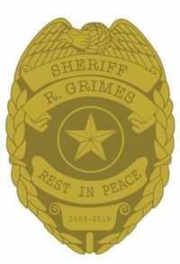 Walking Dead Rick Sheriff Badge Pin