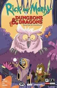 Rick and Morty Vs Dungeons and Dragons II #3 CVR B Allant
