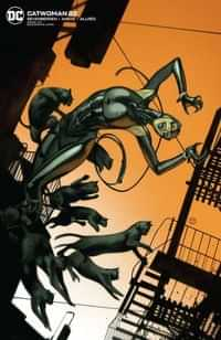 Catwoman #22 CVR B Card Stock J T Tedesco