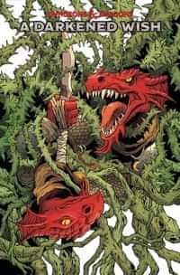 Dungeons and Dragons a Darkened Wish #3 CVR A Fowler