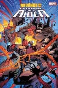 Revenge Of Cosmic Ghost Rider #5 Variant Lubera