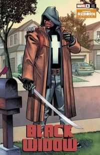 Black Widow V10 #6 Variant Pacheco Reborn
