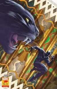 Black Panther #25 Variant Coello Stormbreakers