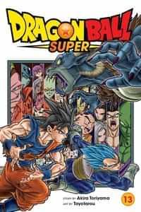 Dragon Ball Super GN V13